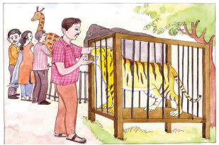 A Tiger in the House Summary in English 3