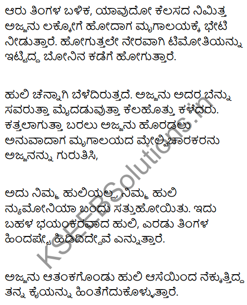 A Tiger in the House Summary in Kannada 2