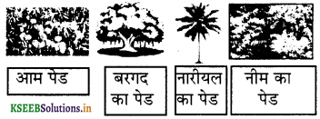 KSEEB Solutions for Class 6 Hindi वल्लरी Chapter 25 वनमहोत्सव 2